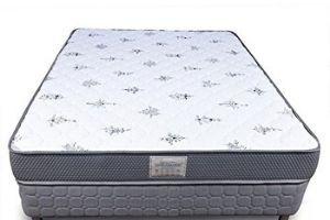 Dreamzee Ortho-Back Memory Foam Mattress
