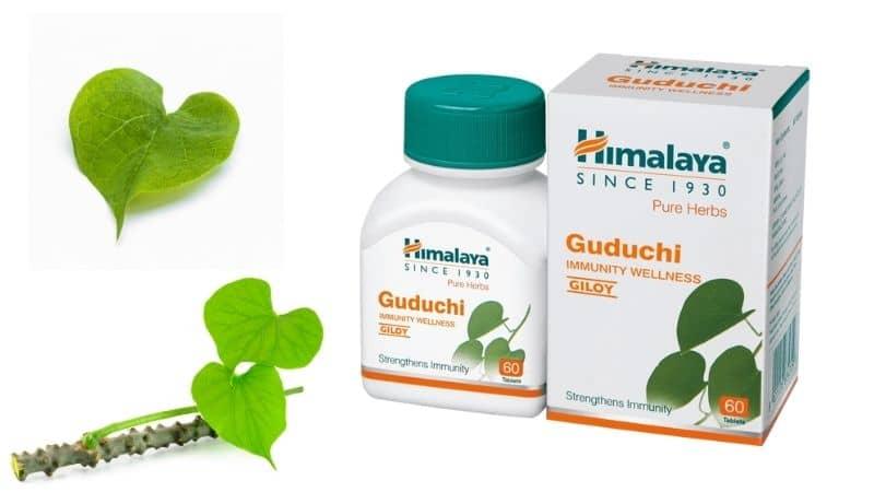 Himalaya Guduchi Tablets – Help Enhance Your Immune System