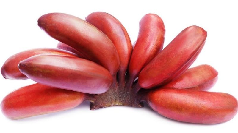 Red Banana - an Instant and Natural Energy Booster