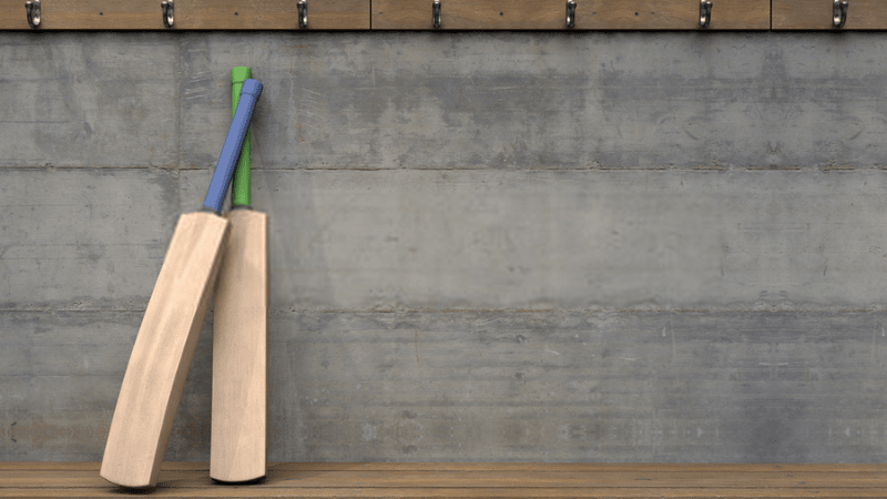 Best Cricket Bat in India – Cost-Effective & Good Quality