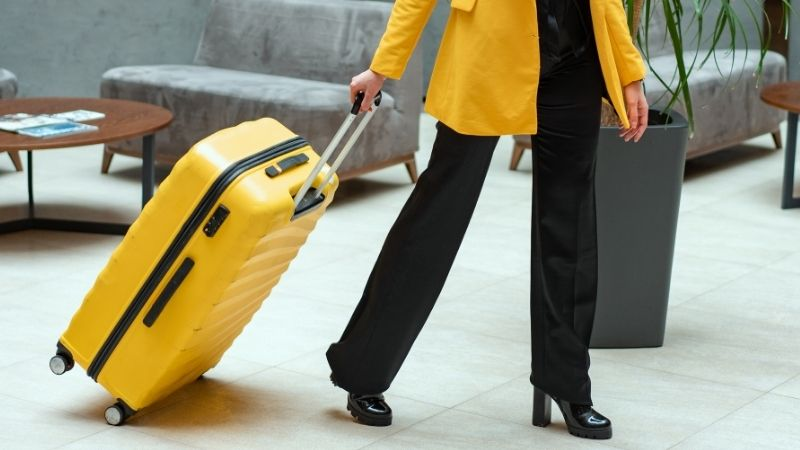 Best Luggage Bags in India - 2021 Version