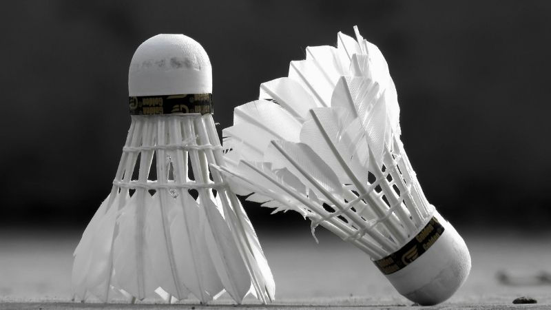 A Comprehensive Study About the Best Shuttlecock in India